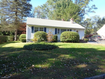Randolph Twp. Single Family Home For Sale: 17 W Elizabeth Dr