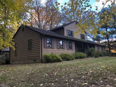 Single Family Home For Sale: 278 Locktown Rd