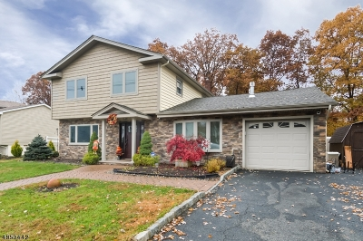 Mount Olive Twp. Single Family Home For Sale: 19 Glendale Rd