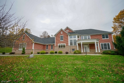 Clinton Twp. Single Family Home For Sale: 3 Blue Cliff Dr