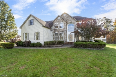 Raritan Twp. Single Family Home For Sale: 6 Countryside Rd