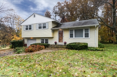 Randolph Twp. Single Family Home Sold: 12 Stonehill Rd