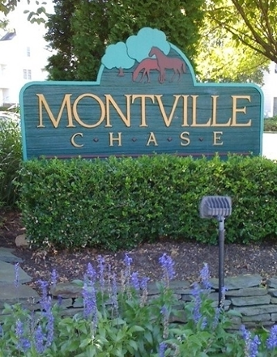 Montville Twp. NJ Condo/Townhouse For Sale: $297,000
