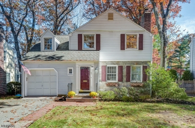 Chatham Boro Single Family Home For Sale: 11 Mercer Ave