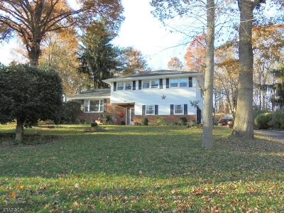 Roxbury Twp. Single Family Home For Sale: 9 Morningside Dr