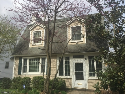 Madison Single Family Home For Sale: 94 Ridgedale Ave