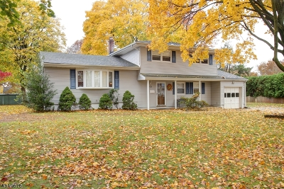 Parsippany-Troy Hills Twp. Single Family Home For Sale: 10 Queen St
