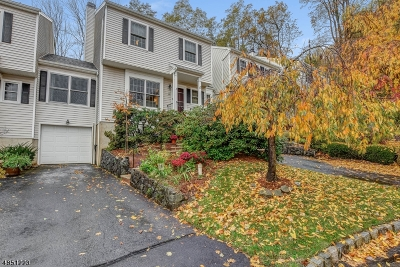 Morris Twp., Morristown Town Condo/Townhouse For Sale: 19 Zamrok Way