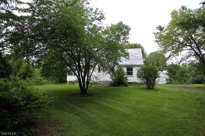 Kingwood Twp. Single Family Home For Sale: 69 Lower Oak Grove Rd