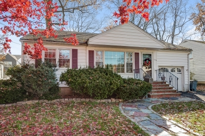 Springfield Single Family Home For Sale: 100 Kew Dr