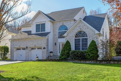 East Hanover Twp. Single Family Home For Sale: 30 Baybury Ct