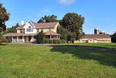 Flemington Boro, Raritan Twp. Single Family Home For Sale: 127 Voorhees Corner Rd