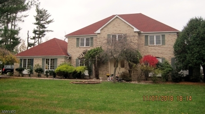 Raritan Twp. Single Family Home For Sale: 305 Old York Rd