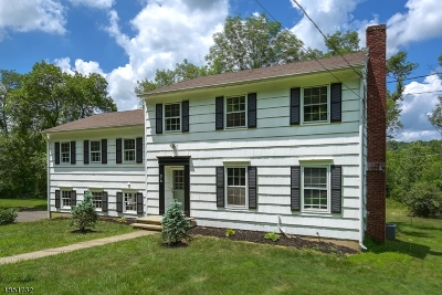 Bernards Twp., Bernardsville Boro Single Family Home For Sale: 518 Mine Brook Rd