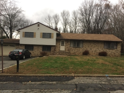 Randolph Twp. Single Family Home For Sale: 44 Sanford Dr