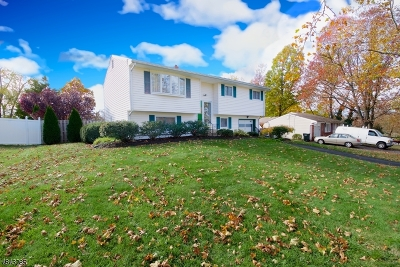 Franklin Twp. Single Family Home For Sale: 80 Winston Dr
