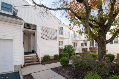 Bedminster Twp., Bridgewater Twp., Bernards Twp., Raritan Boro Rental For Rent: 234 Alexandria Way