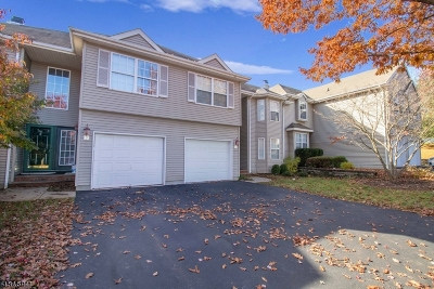 Clinton Town, Clinton Twp. Single Family Home For Sale: 14 Spring Brook Dr