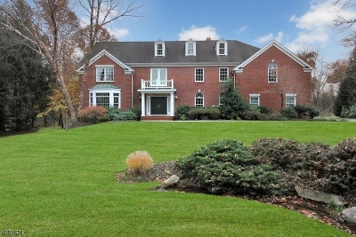 Bernards Twp., Bernardsville Boro Single Family Home For Sale: 55 Butternut Ln