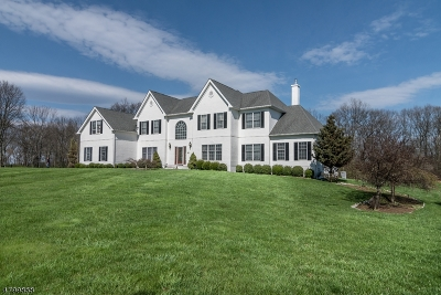 Mount Olive Twp. Single Family Home For Sale: 16 Southwind Dr