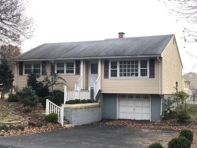 Rockaway Twp. Single Family Home For Sale: 24 Struble Ln