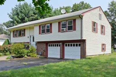 Parsippany-Troy Hills Twp. Single Family Home For Sale: 45 White Oak Rd