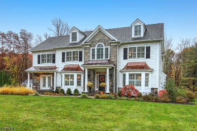 Bernards Twp. Single Family Home For Sale: 90 Culberson Rd