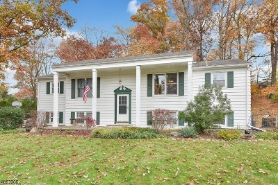 North Haledon Boro Single Family Home For Sale: 782 High Mt Rd