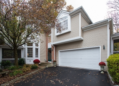 Chatham Boro Condo/Townhouse For Sale: 3 Schindler Ct
