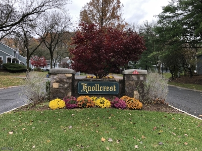 Bedminster Twp. NJ Condo/Townhouse For Sale: $375,000