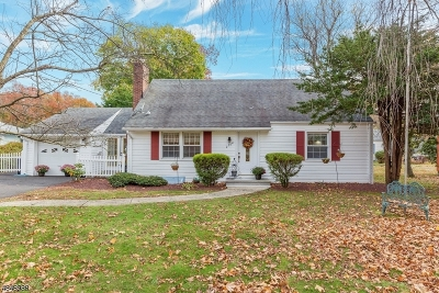 Scotch Plains Twp. Single Family Home For Sale: 2594 Mountain Ave