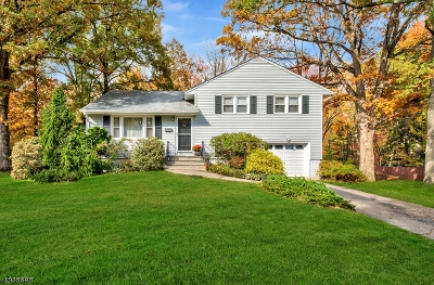 Chatham Boro Single Family Home For Sale: 175 N Passaic Ave
