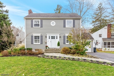 New Providence Single Family Home For Sale: 36 Holmes Oval