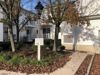 Bernards Twp. Condo/Townhouse For Sale: 141 Alexandria Way