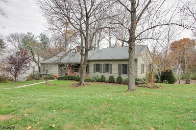 Morris Twp., Morristown Town Single Family Home For Sale: 10 Chimney Ridge Dr