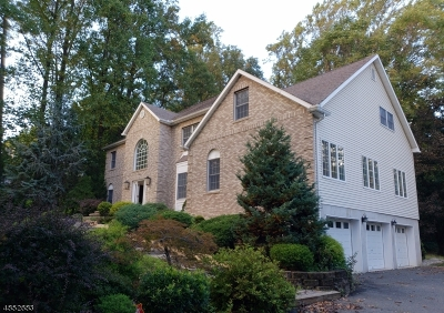 Boonton Town Single Family Home For Sale: 497 Morris Ave