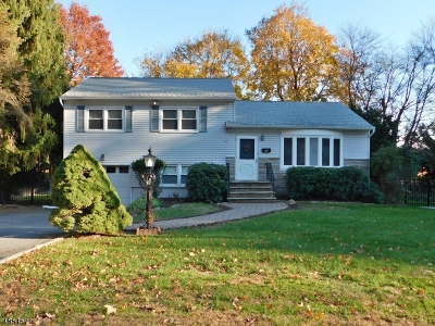 Parsippany-Troy Hills Twp. Single Family Home For Sale: 28 Grafton Dr