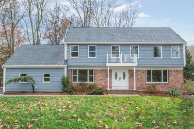 Montville Twp. Single Family Home For Sale: 1 Kristin Court