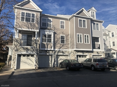Clifton City Condo/Townhouse For Sale: 162 Brittany Ct