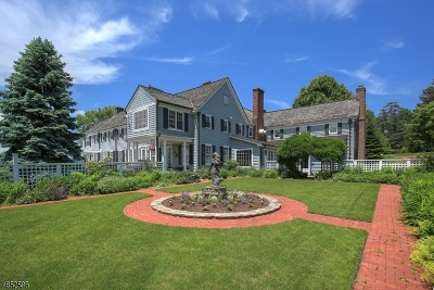 Bedminster Twp. NJ Single Family Home For Sale: $3,985,000