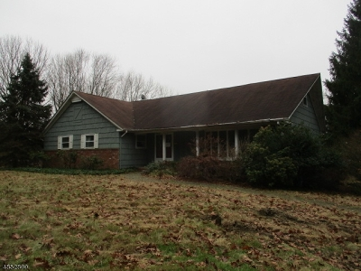 Mendham Boro, Mendham Twp. Single Family Home For Sale: 17 Tempe Wick Rd