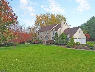 Branchburg Twp. Single Family Home For Sale: 3 Tamarack Dr