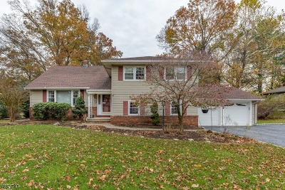 Bound Brook Boro Single Family Home For Sale: 814 Meadow Dr