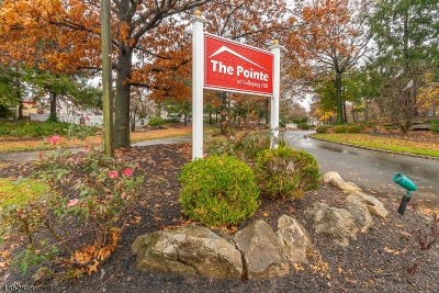Union Twp. Condo/Townhouse For Sale: 221 Broadmoor Court #6