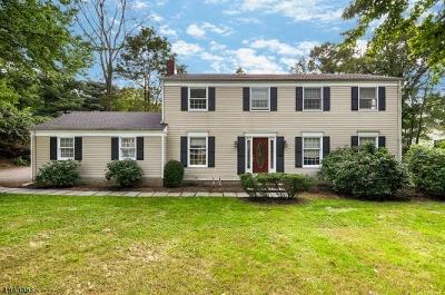 Morris Plains Boro NJ Rental For Rent: $3,900