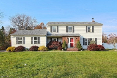 Hillsborough Twp. Single Family Home For Sale: 27 E Mountain Rd