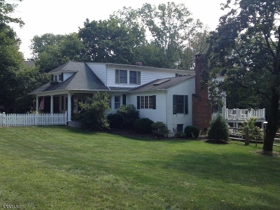 Basking Ridge Single Family Home For Sale: 91 Highland Ave