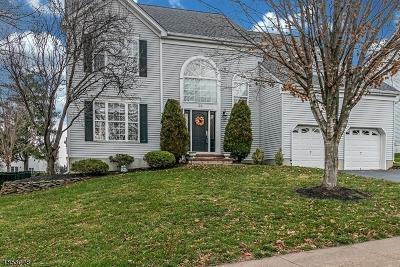 Raritan Boro NJ Single Family Home For Sale: $620,000
