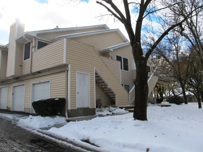 Bedminster Twp. NJ Condo/Townhouse For Sale: $285,000