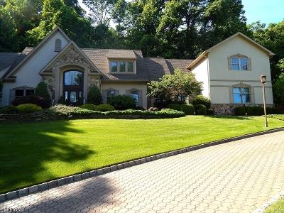 Warren Twp. NJ Single Family Home For Sale: $1,175,000